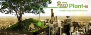 Elektriciteit opwekken met een groen dak, het kan!