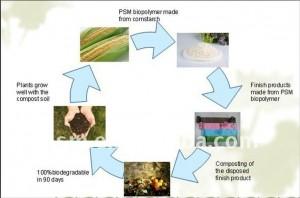 Circulaire economie met Biopolymeren.