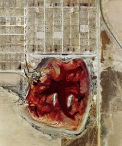 """Een """"weidegrond"""" in Texas, uit de serie 'Feedlots' van fotograaf Mishka Henner."""